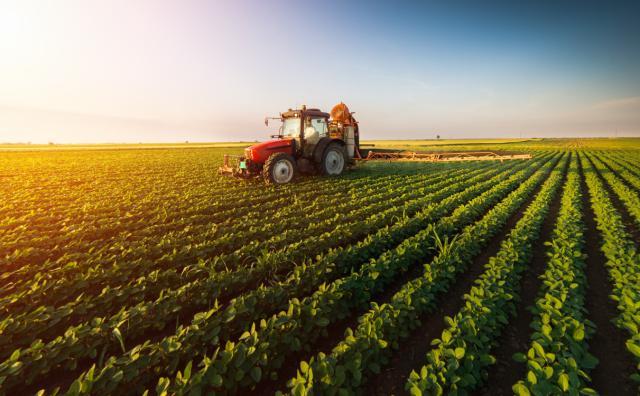 梅旭荣|《中国农业产业发展报告》权威发布!开发CASM模型聚焦17种农产品,细数影响农业的政策与外界冲击!