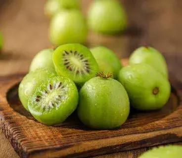 艾军|软枣猕猴桃惊艳了吃货的世界