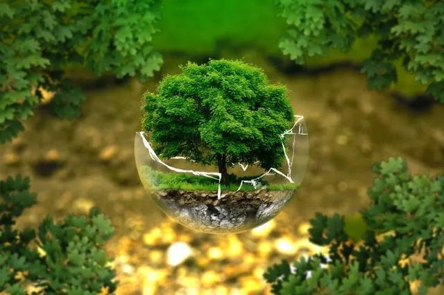我国智慧农业的发展现状、问题及战略对策